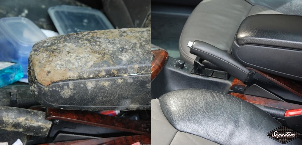 Extreme Mold Removal_Signature Detailing of Notthern New Jersey_Greg Gellas - Arm Rest BEFORE & AFTER