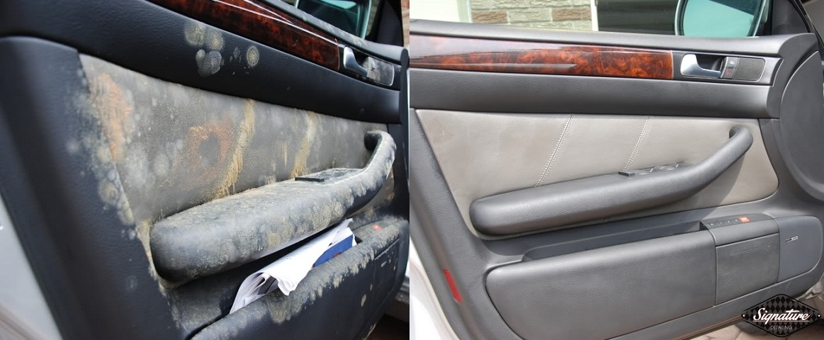 Extreme Mold Removal_Signature Detailing of Notthern New Jersey_Greg Gellas - Driver Door BEFORE & AFTER