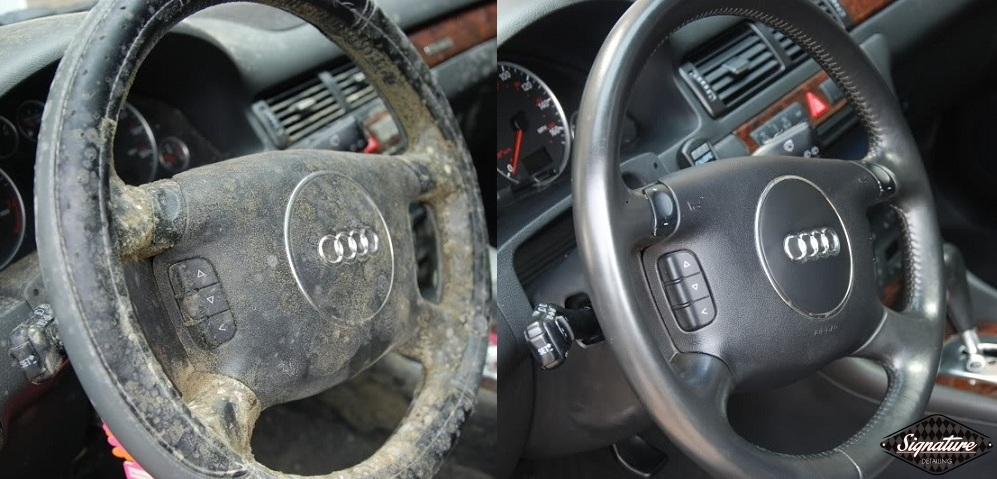 Audi Allroad - Extreme Mold Removal - Greg Gellas New York & New Jersey