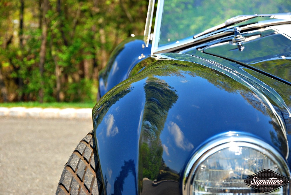 Shelby Cobra Replica Restoration Detail - Signature Detailing New Jersey - front PS- sun