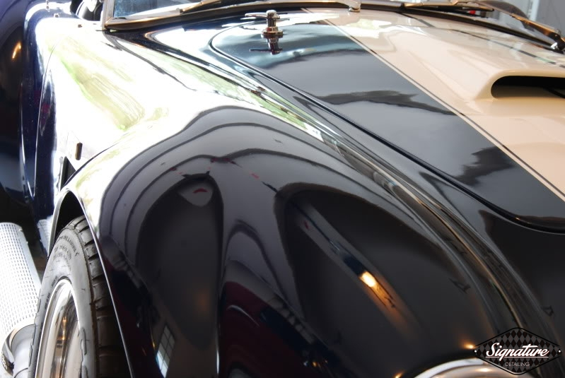 Shelby Cobra Replica Restoration Detail - Signature Detailing New Jersey - hood inside gloss